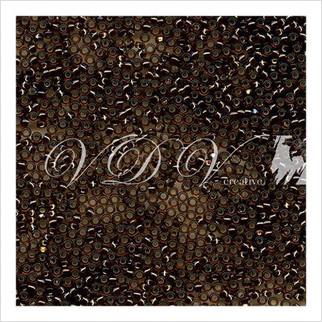 Бисер Round Rocaille 11/0 № 1431 (внутреннее серебрение)
