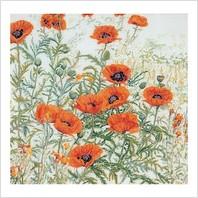Набор для вышивания ''Оранжевые маки