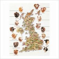 Набор для вышивания ''Карта пород овец Великобритании