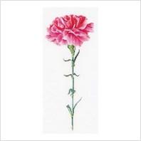 Набор для вышивания ''Розовая гвоздика