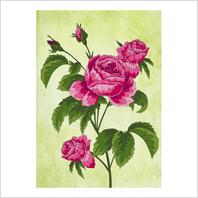 Ткань с печатью для вышивки мулине ''Розы