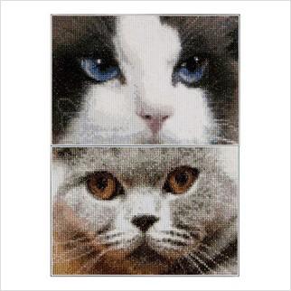 """Набір для вишивання ''Кішки Смоки + Блу"""""""