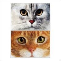 Набір для вишивання ''Коти Тигр + Кітті